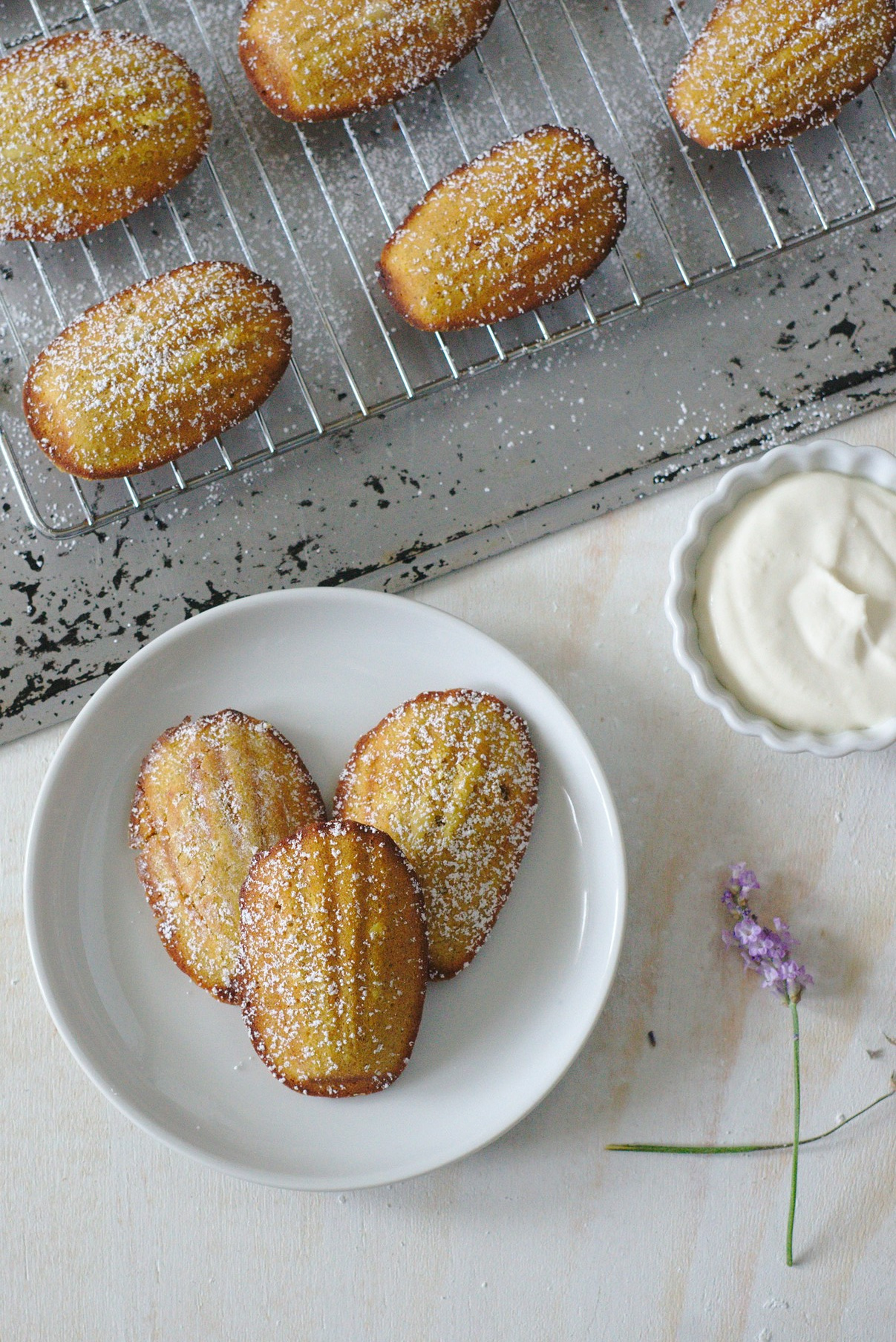 Fall Madeleines